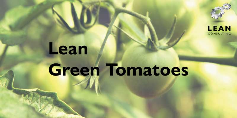 Lean Green Tomatoes